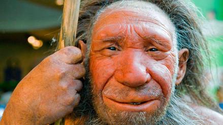 La voluminosa nariz de los neandertales era para sobrevivir al frío