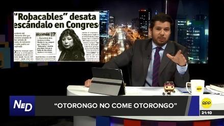 Otorongo no come otorongo: un repaso a las acusaciones contra congresistas, por Renato Cisneros