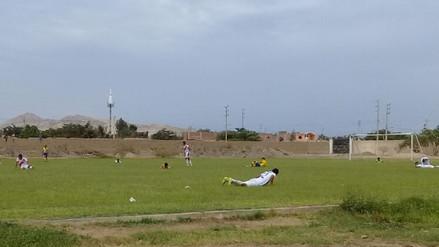 Abejas atacan a futbolistas en pleno partido en Paiján