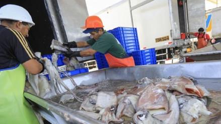 Pescadores de pota de Lambayeque son asaltados por