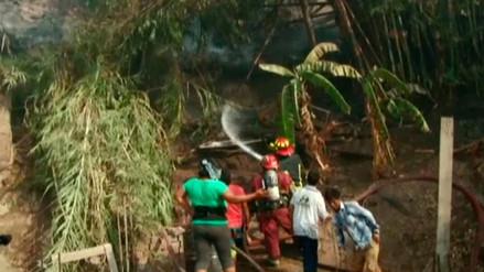 15 unidades de los Bomberos controlaron el incendio forestal en Chaclacayo