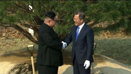 Kim Jong-un y Moon Jae-in plantaron un árbol en una simbólica ceremonia