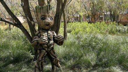 'Baby Groot' llegó al Cusco: parque natural incluye entre sus atracciones a uno de los Guardianes de la Galaxia