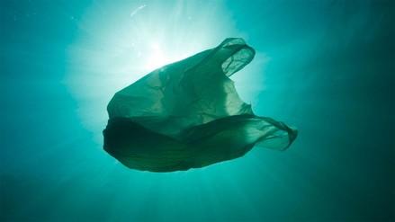 El Gobierno buscará regular el uso de bolsas de plástico