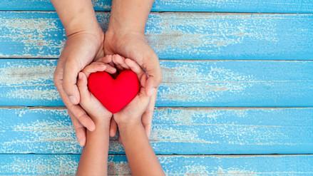 La solidaridad y su importancia como soporte del bienestar