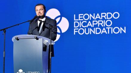 Conoce al escarabajo nombrado en homenaje a Leonardo DiCaprio