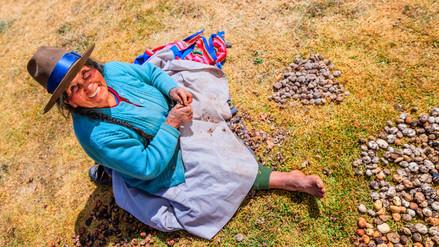 Los peruanos tienen una de las tallas más bajas del mundo