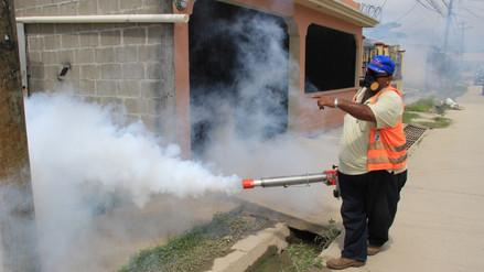 Fumigan 750 casas afectadas por plaga de zancudos en Arequipa