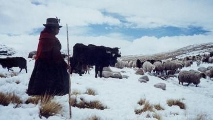 El Gobierno declara en emergencia 55 distritos de once regiones por heladas y nevadas