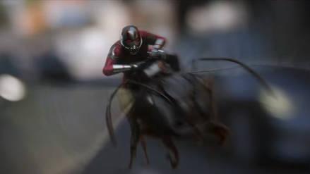 """""""Ant-Man y la Avispa"""": Nuevo spot televisivo responde una gran pregunta de """"Infinity War"""""""