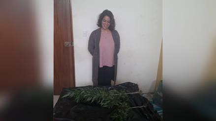 Detienen a sueca con plantones de marihuana en su vivienda de Huanchaco