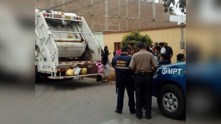 Hallan feto en camión recolector de basura de Trujillo