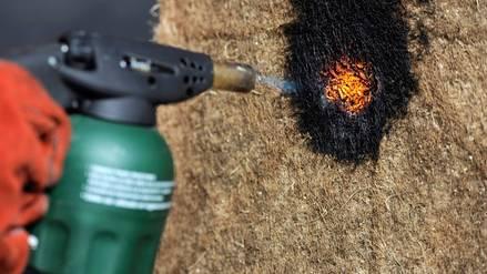 Chilenos crean material de construcción sustentable y resistente al fuego