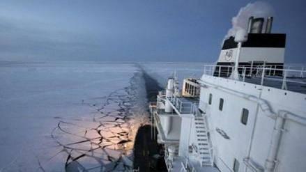 Algunos mamíferos son amenazados por creciente circulación de embarcaciones en el Ártico