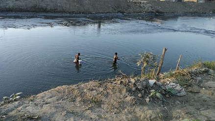 Pescan tilapias contaminadas en río Moche