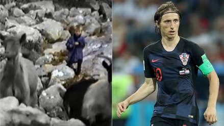 Video muestra a Luka Modric cuidando cabras en una montaña llena de lobos cuando tenía cinco años