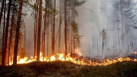 Suecia solicitó ayuda internacional para combatir incendios provocados por altas temperaturas