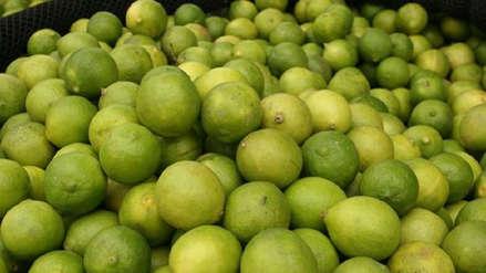 Precio mayorista del limón sube 18.9% en lo que va de julio en Lima