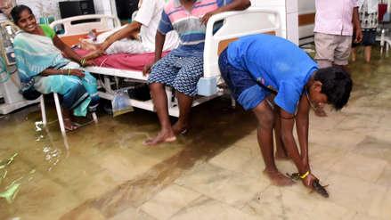 Fotos | Peces llegan a pasillos de un hospital tras inundaciones en la India