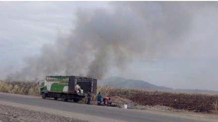Exigen sancionar a empresas azucareras que queman cañaverales