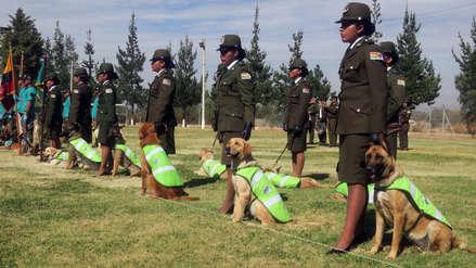 Un cementerio único en el mundo para los perros detectores de droga en Bolivia