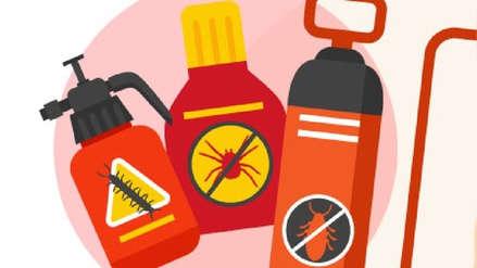 ¿Cuáles son los síntomas de una intoxicación y cómo se puede prevenir?