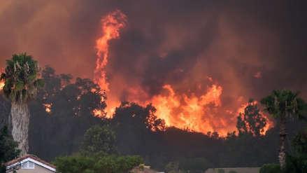 El calentamiento global es el catalizador de los incendios forestales, advierten los científicos