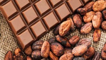 Europa pone restricciones al cacao por contenido de cadmio