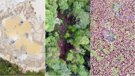 Fotos | La deforestación en Madre de Dios captada por drones