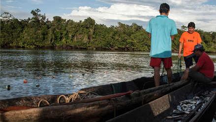 Dieta alimenticia de comunidades nativas está en riesgo por proyecto hidrovial