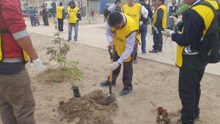 Internos siembran mil árboles en distrito de José Leonardo Ortiz