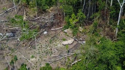 Drones revelaron la existencia de tribu aislada cerca de la frontera entre Perú y Brasil
