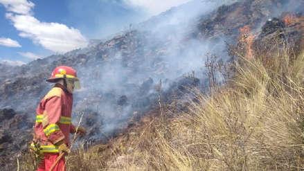 Incendio forestal se registra en el Valle Sagrado de los Incas