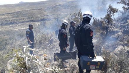 Video | Controlan incendio forestal en límite de Arequipa con Moquegua