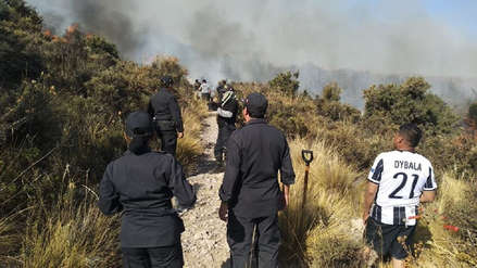 Fotos y Video | Incendio forestal llega al bosque de queñuales en Arequipa