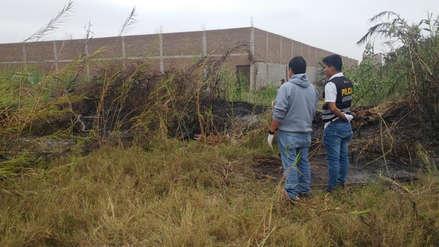 Chiclayo: asesinan a joven y lo queman en cañaveral