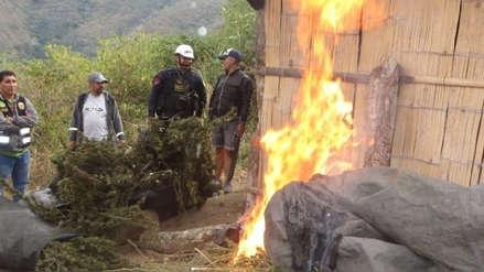 Jaén | Policía decomisa 40 kilos de marihuana y detiene a tres personas