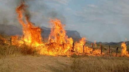 Bomberos forestales deben intervenir en incendios  fuera de áreas protegidas