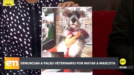 Un falso veterinario causó la muerte de una mascota en Carabayllo