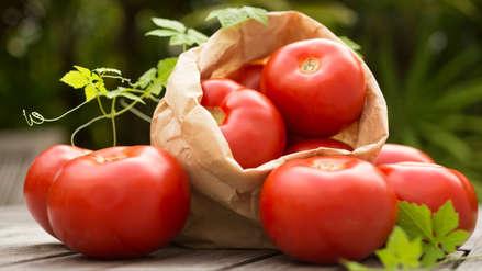 Cinco alimentos que te ayudan a mantener un metabolismo activo