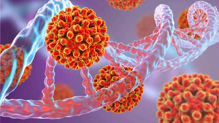 Hepatitis B es hasta 100 veces más contagiosa que el VIH