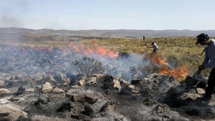 Más de mil hectáreas fueron consumidas por incendio forestal en Arequipa