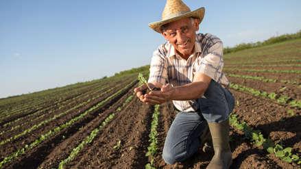 ¿Por qué son importantes los seguros agrarios?