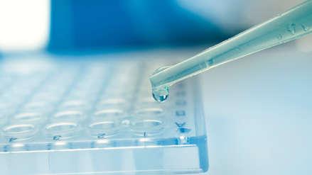 Una nueva inmunoterapia suprime el virus del sida durante meses, según estudio