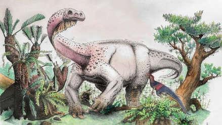 Colosal dinosaurio de 200 millones de años fue bautizado con nombre 'metalero': Trueno al Amanecer