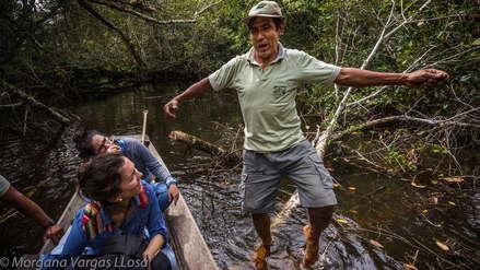 La otra ruta | El loco de la selva
