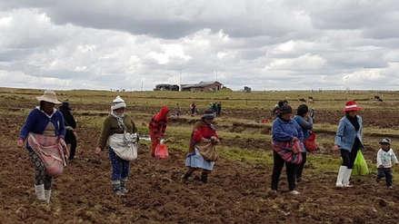 Tres provincias de Arequipa tienen menos población que hace 10 años