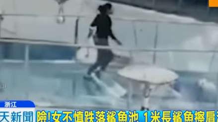 Mujer cayó a piscina de hambrientos tiburones en centro comercial de China
