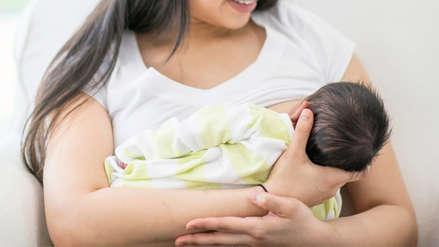 La leche materna protege a los recién nacidos de las bacterias resistentes a los antibióticos