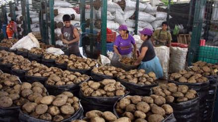 Crece producción de papa, plátano y aves en La Libertad